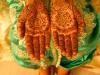 Amel henna palms