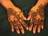 Amelia henna hands