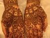 Sakina henna palms